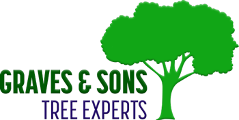 graves & sons tree experts llc logo